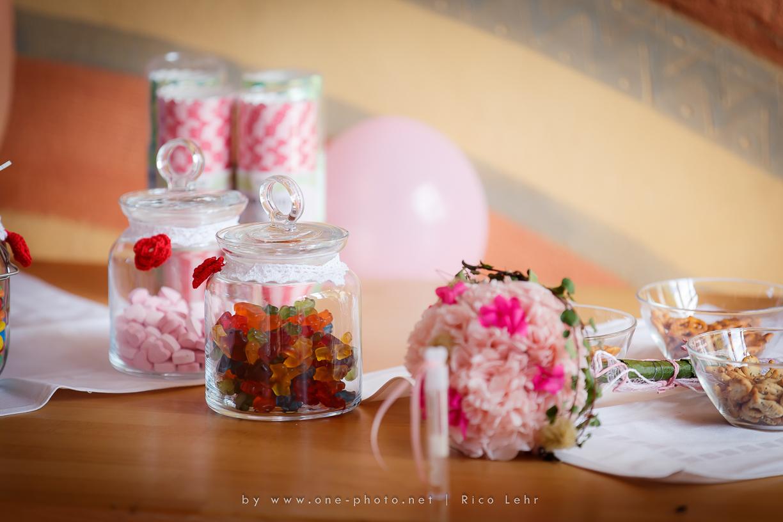 Hochzeit-Landschloss-Zuschendorf-Pirna-Fotograf--39-von-44-Rico Lehr-www.one-photo.net)