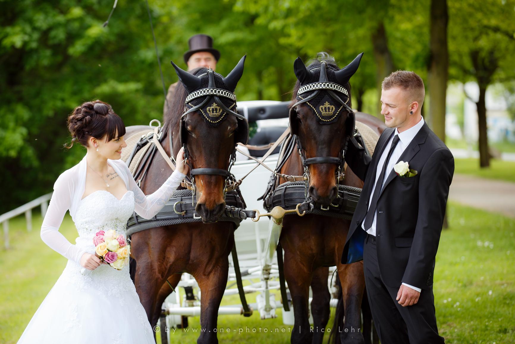s_Hochzeit_Lena_Maik (173 von 539)