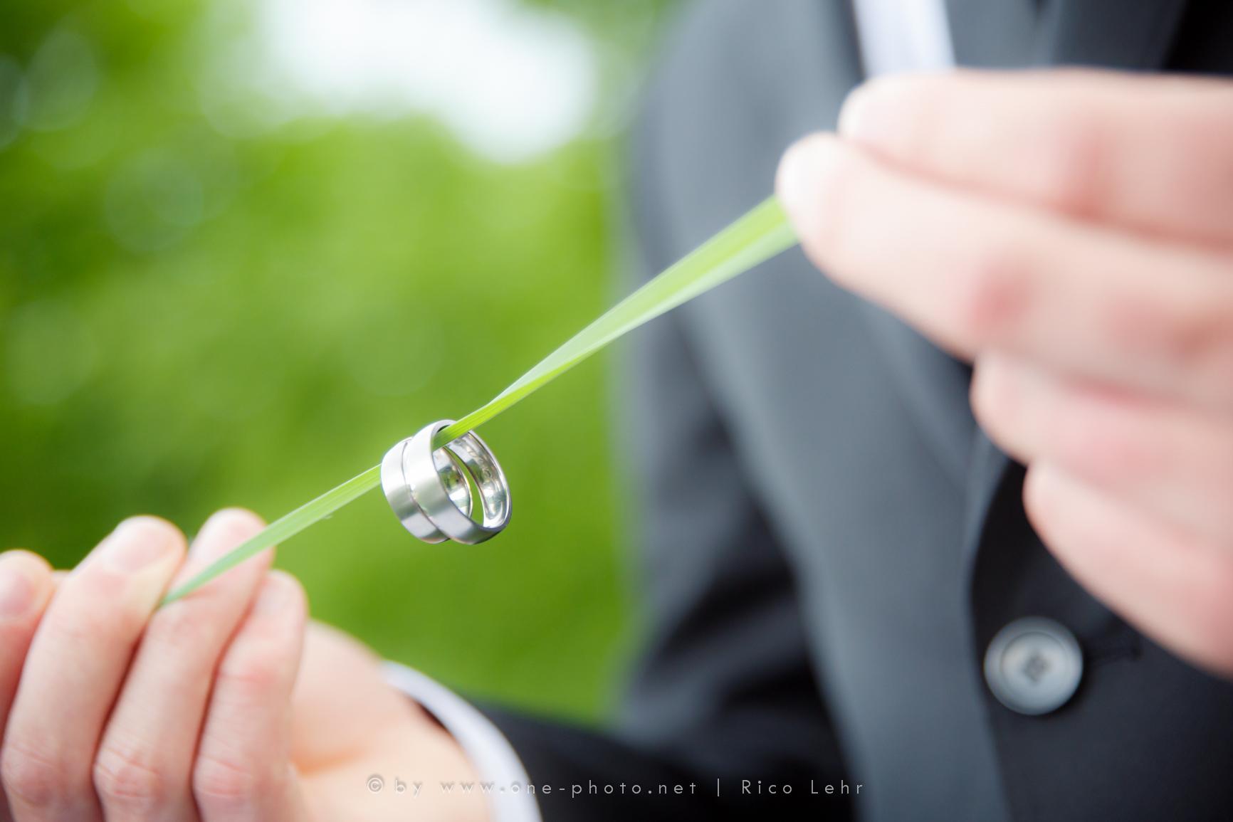 Hochzeit-Fotograf-Pirna-Rico-Lehr