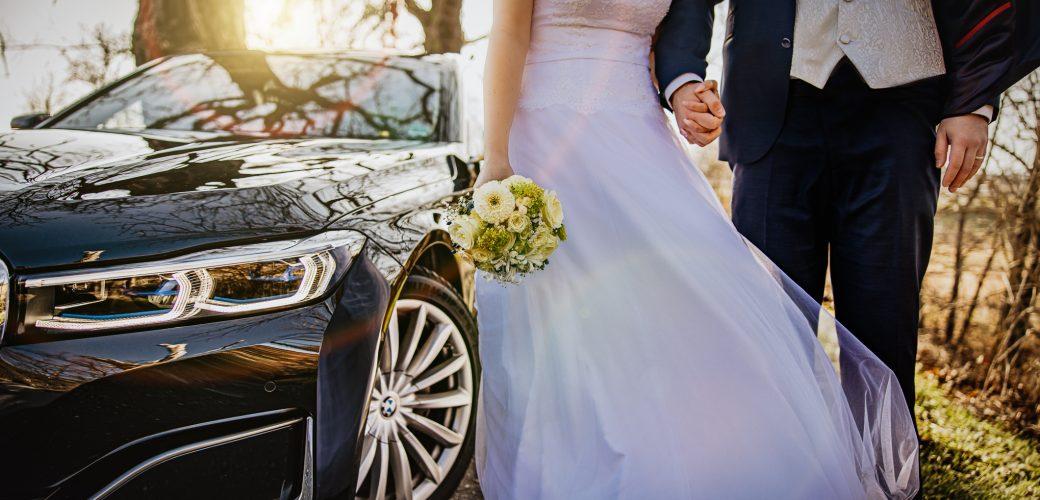 Hochzeit-Pirna-Dresden-Pillnitz-Fotograf-Brautpaarshooting